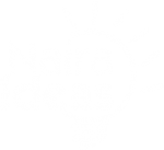 Free Business Plans and Feasibility Studies in Nigeria